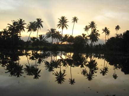 09 dämmerung in den backwaters