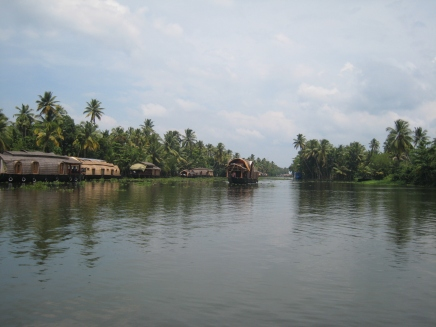 12 backwaters pur
