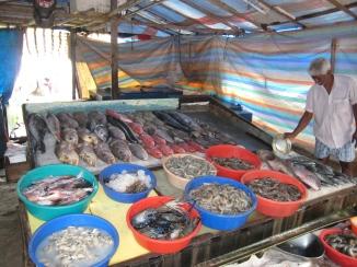 16 frischen fisch gefällig
