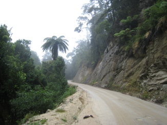 01 Fahrt nach Totaranui