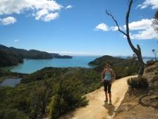 10 Wanderung zurück nach Marahau auf dem Abel Tasman Coast Trek