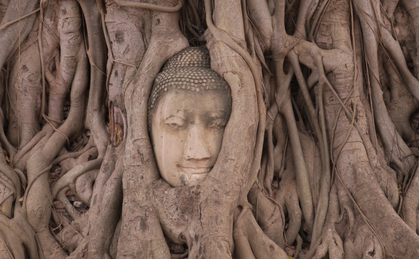 Tempel-Hopping in Ayutthaya