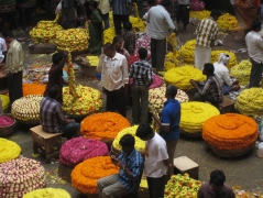 10 blumen auf dem city market