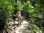 10 ute im bukit timah nature reserve