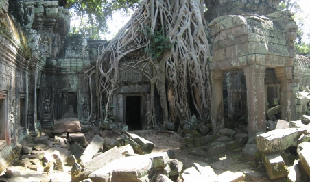 15 tempel vs. dschungel in ta prohm 2