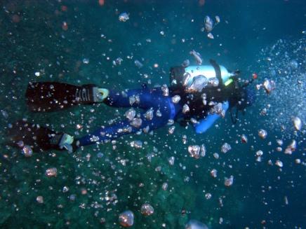 05 Ronald unter Wasser