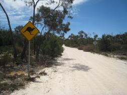 06 Das obligatorische Känguruwarnschild-Foto ;-)