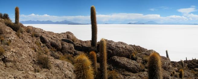 06 Isla Inkahuasi und die Salar de Uyuni