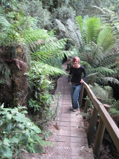 06 Ute im Wielangta Forest