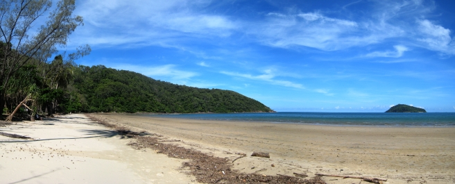 12 Cow Bay im Daintree National Park